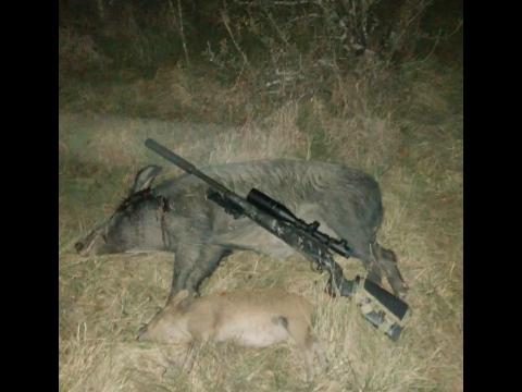 1shot 2 kills | Hunting