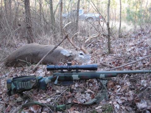GAP 260 w buck taken at 258 yds   Hunting