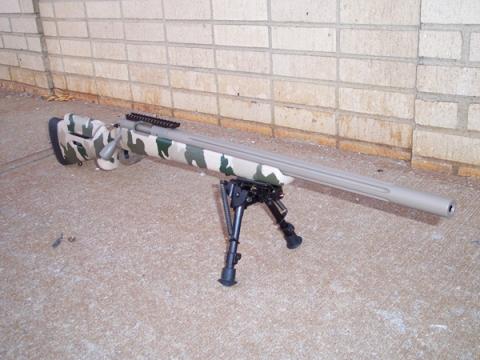 GAP Rock in Adjustable HTG Stock | Rifle